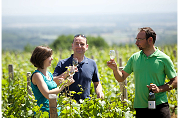 Découvrir un domaine viticole perché sur les hauteurs de Lugny