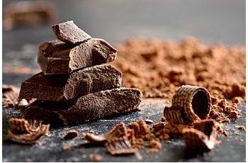 Sur la Route du Chocolat en Normandie