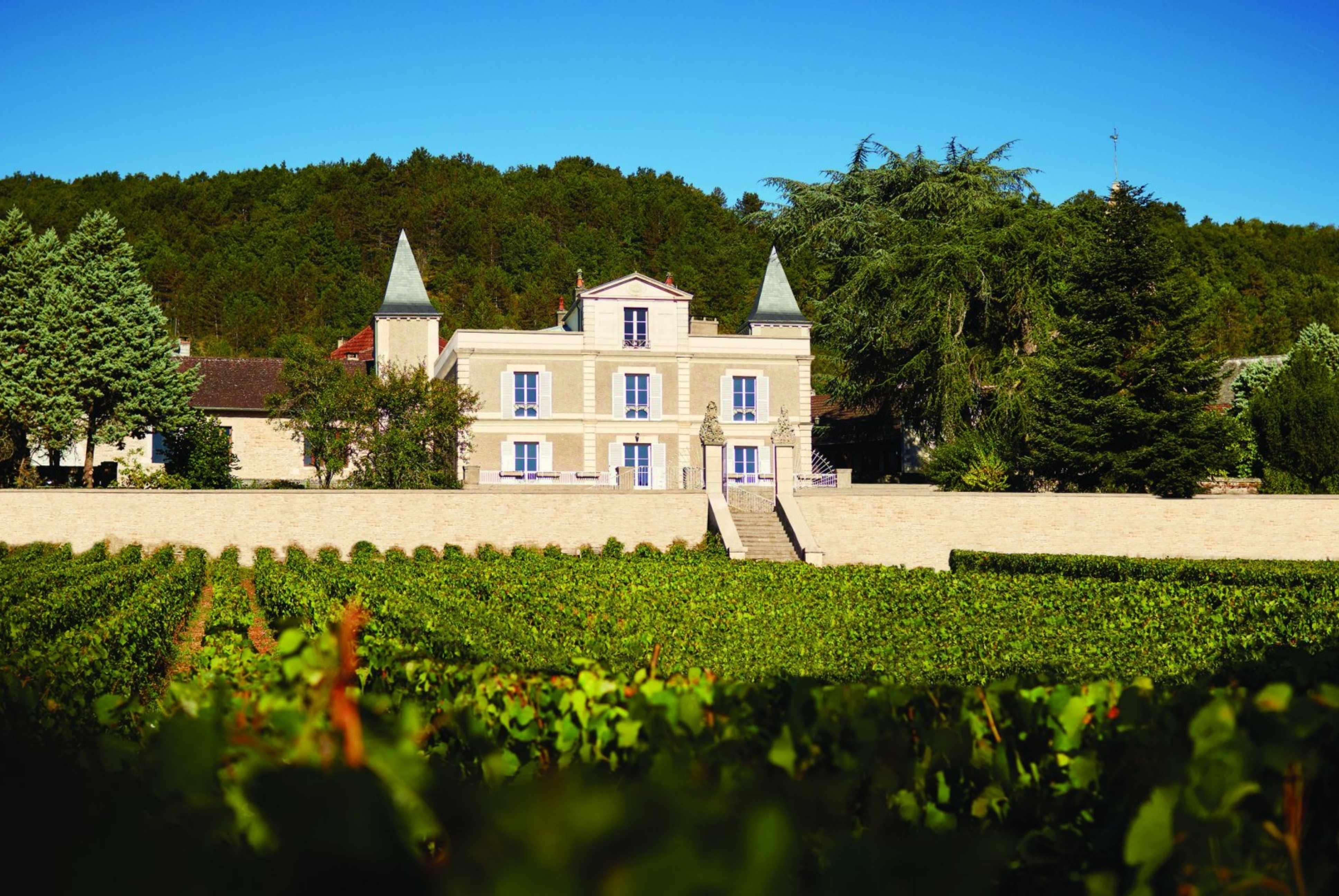 Offrir une escapade oenotouristique au Château Saint-Aubin